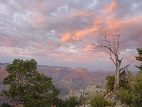 What To Take On a Trip to the Grand Canyon