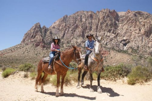 morning maverick horseback ride