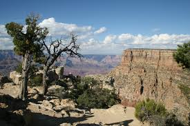 grand-canyon-moran-point