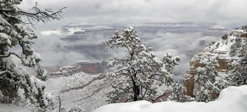 Visiting the Grand Canyon during the Winter Holidays