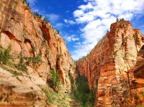 Grand Canyon-hiking - zion-national-park