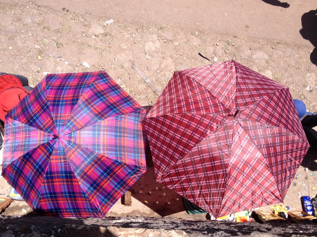 umbrellas come in handy for desert survival
