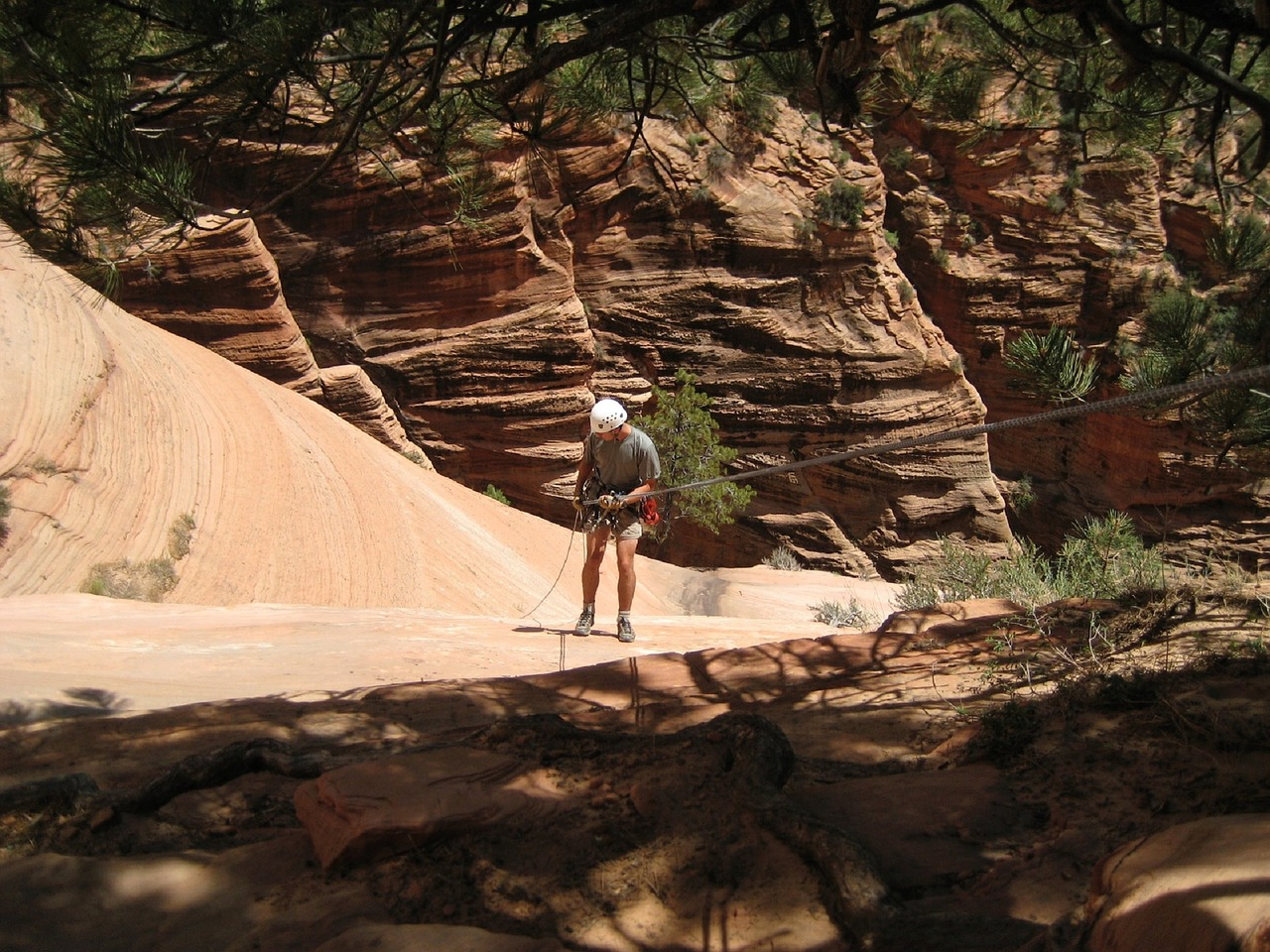 activities at zion national park