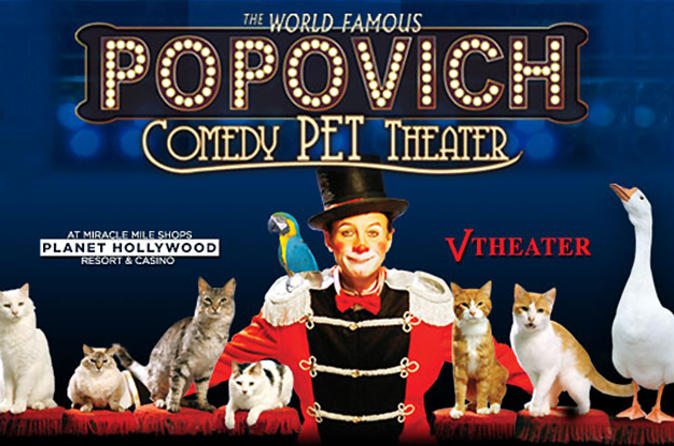 las vegas for kids pet theatre