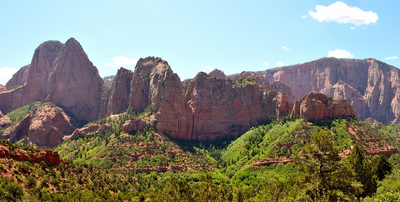 upper zion - zion national park