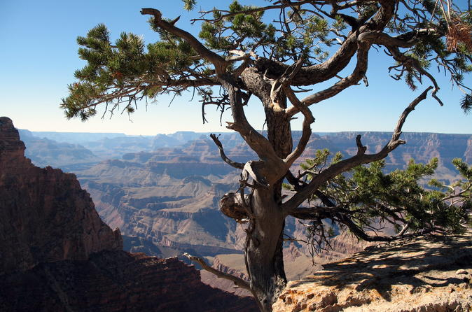 Flagstaff to Grand Canyon Hiking Tour