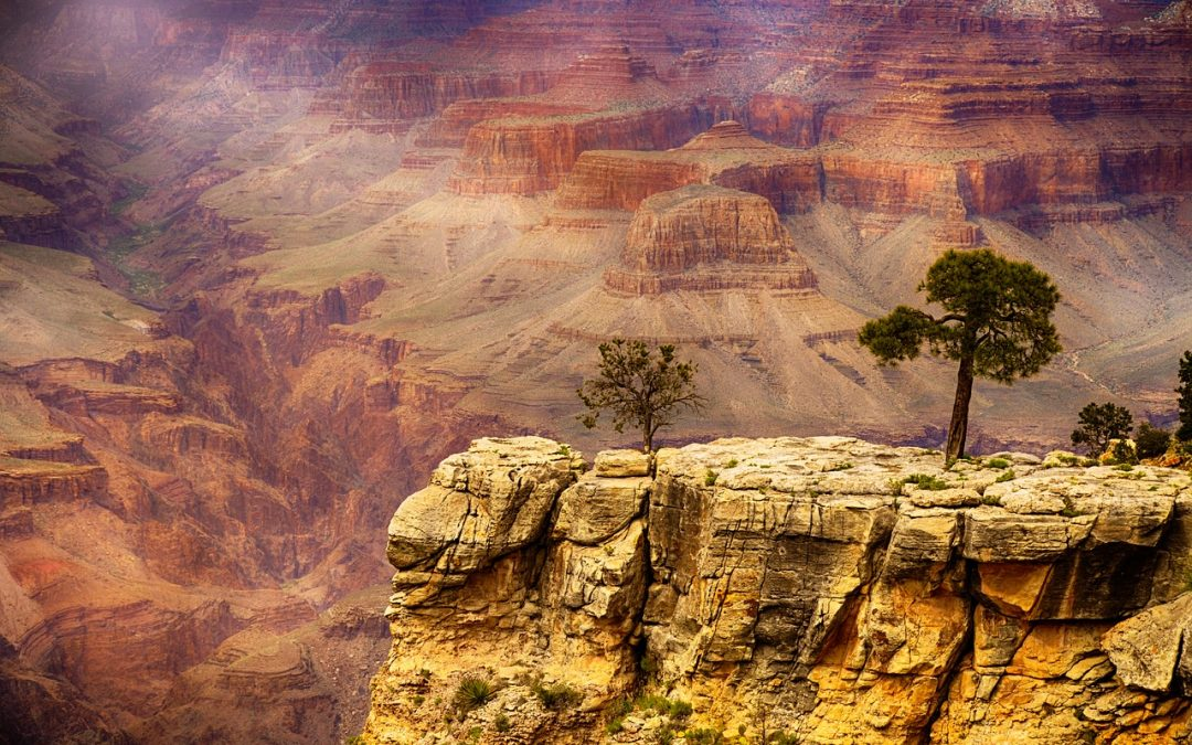 Grand Canyon Rim to Rim Travel Guide